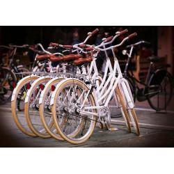Reserva por días - Bicicleta